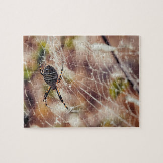 An Orb Weaver Spider on Web During Fall Jigsaw Puzzle