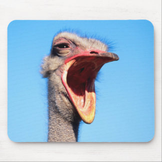 An Ostrich showing aggression Mouse Pad
