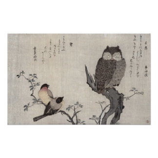 An Owl and two Eastern Bullfinches Poster