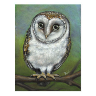 An owl friend by Tanya Bond Postcard