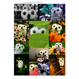 An Owl Named Ophelia Greeting Cards