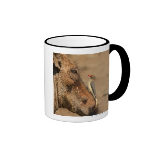An Oxpecker on a warthogs snout, Isimangaliso, Coffee Mugs