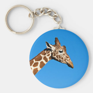 An Photo Of A Giraffe On A Blue Background Keychain