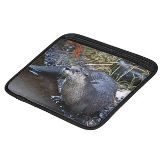 An Photo Of A River Otter Sleeve For iPads