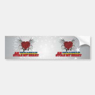 An Ukrainian Stole my Heart Bumper Stickers