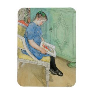 Ana Juana que lee un libro Imanes Flexibles