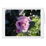 Ana Rose Greeting Card