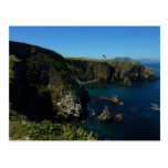 Anacapa Island II at Channel Islands National Park Postcard
