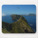Anacapa's Inspiration Point I in Channel Islands Mouse Pad