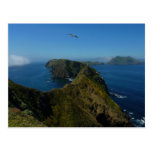 Anacapa's Inspiration Point I in Channel Islands Postcard