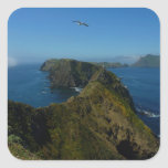 Anacapa's Inspiration Point I in Channel Islands Square Sticker