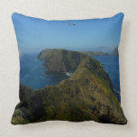 Anacapa's Inspiration Point I in Channel Islands Throw Pillow