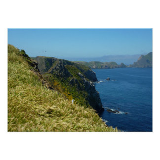 Anacapa's Inspiration Point II in Channel Islands Poster