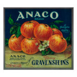 Anaco Apple Crate Label Poster