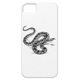 Anaconda iPhone 5 Covers