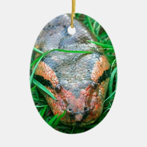 Anaconda snake ceramic ornament