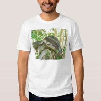 Anaconda verde playera