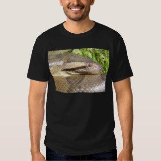 Anaconda verde polera