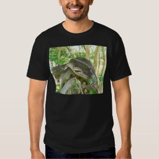 Anaconda verde poleras
