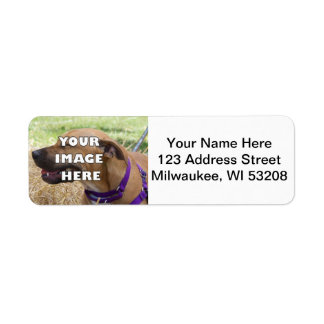 ¡Añada su animal! Etiquetas de dirección