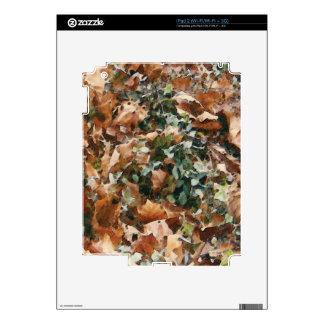 Añada su foto/mensaje/logotipo preferidos iPad 2 calcomanías