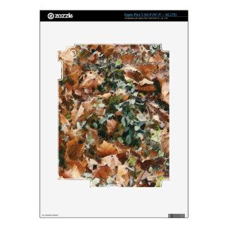 Añada su foto/mensaje/logotipo preferidos iPad 3 pegatinas skins