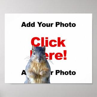 Añada un poster de encargo de la foto de la ardill