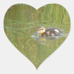 Anadón de la natación pegatina en forma de corazón