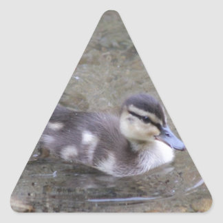 Anadón Pegatina Triangular