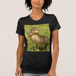 Anadón Camiseta