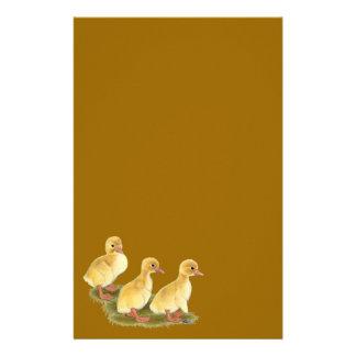 Anadones amarillos papelería personalizada