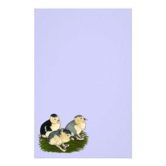 Anadones azules de la urraca papelería