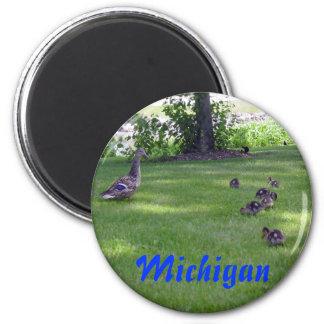 Anadones de Michigan Imán Redondo 5 Cm