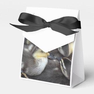 Anadones Snuggling Caja Para Regalo De Boda