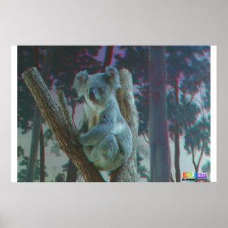 Anáglifo de la koala 3D Posters