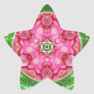 Anahata Rose Star Sticker