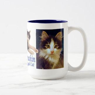 Anakin Two Legged Cat, Cute Kitten Mug Close Up