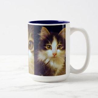Anakin Two Legged Cat, Cute Kitten Mug, Close Up Two-Tone Coffee Mug