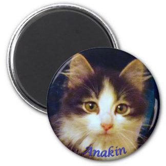 Anakin Two Legged Cat, Cute Kitten Round Magnet