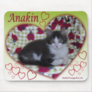 Anakin Two Legged Cat Ladybug Heart KittyMousepad Mouse Pad