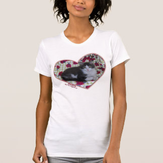 Anakin Two Legged Cat Ladybug Hearts Kitten Tshirt