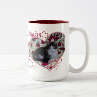 Anakin Two Legged Cat, Ladybugs Hearts, Kitten Mug
