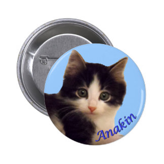 Anakin Two Legged Cat Logo, Cute Kitten Button