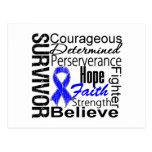 Anal Cancer Survivor Collage Post Card