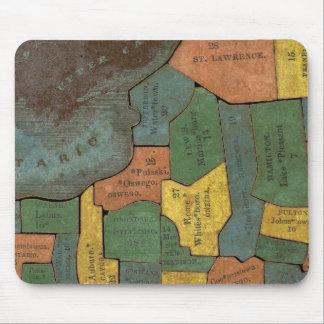 Análisis geográfico del estado de Nueva York Alfombrillas De Ratón