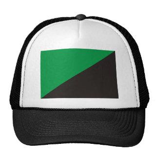 anarchy eco flag green black ecology bio trucker hat