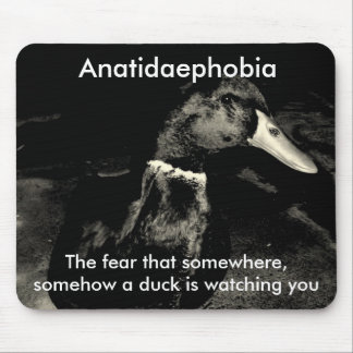 Anatidaephobia Tapetes De Raton