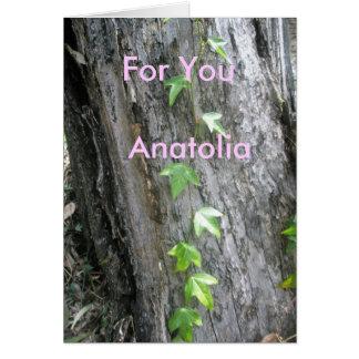 Anatolia Card