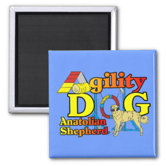 Anatolian Shepherd Agility Gifts 2 Inch Square Magnet