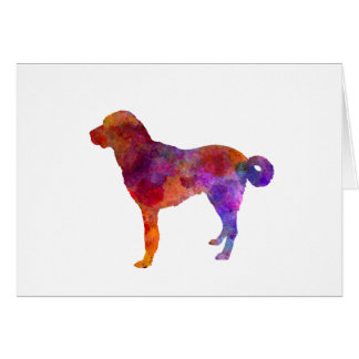 Anatolian Shepherd Dog in watercolor Card